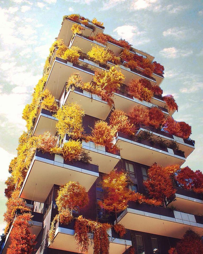 Jardins verticaux autumnaux, Milan