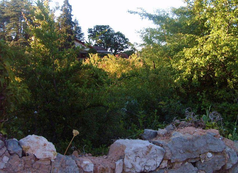 Mystérieuse Provence en été.