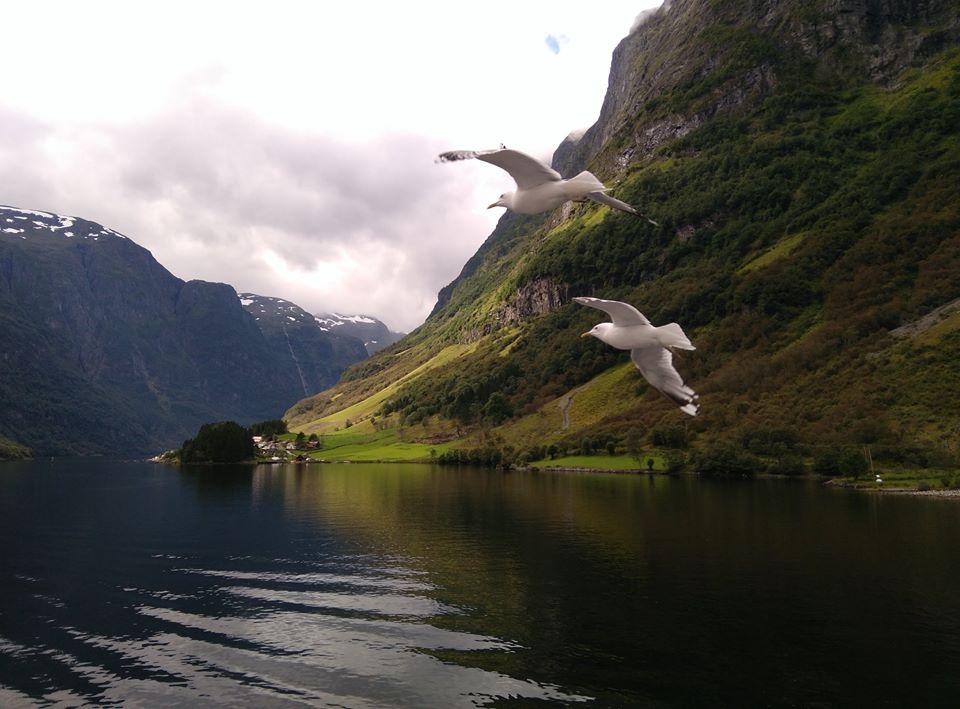 fjord de Norvège