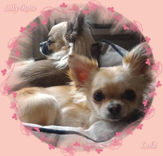 Lola et Lily-Rose.
