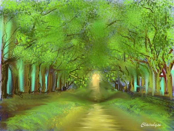 Forêt en été