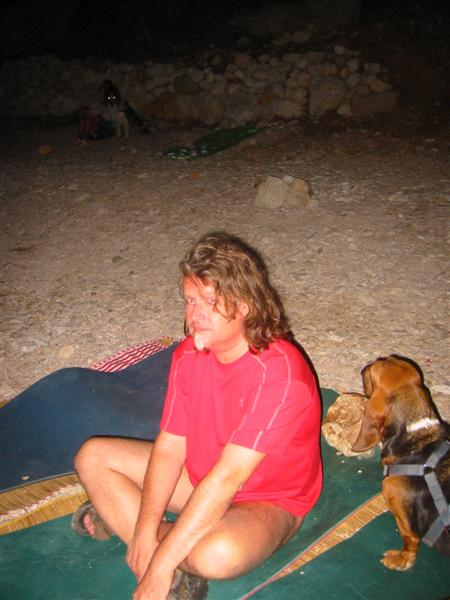 Nala Basset hound