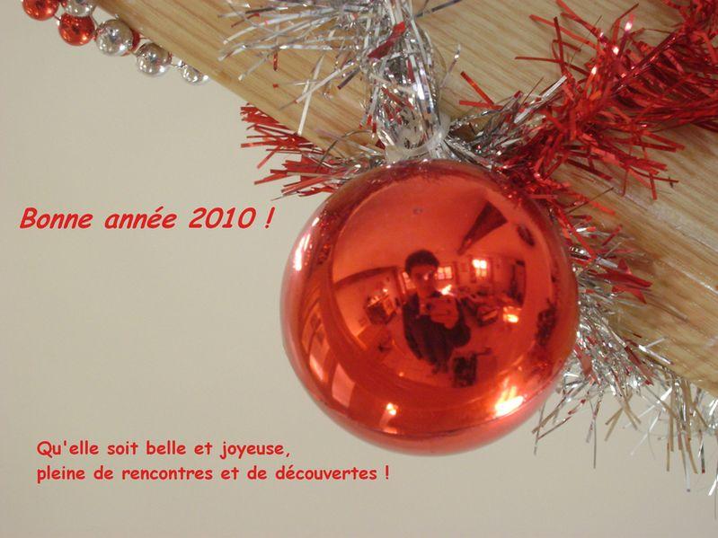 Meilleurs voeux pour 2010 !