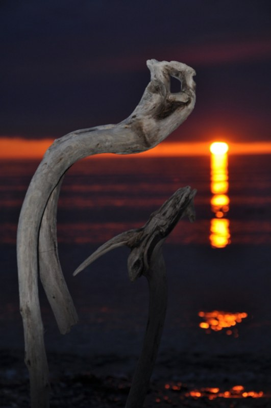feu du soir