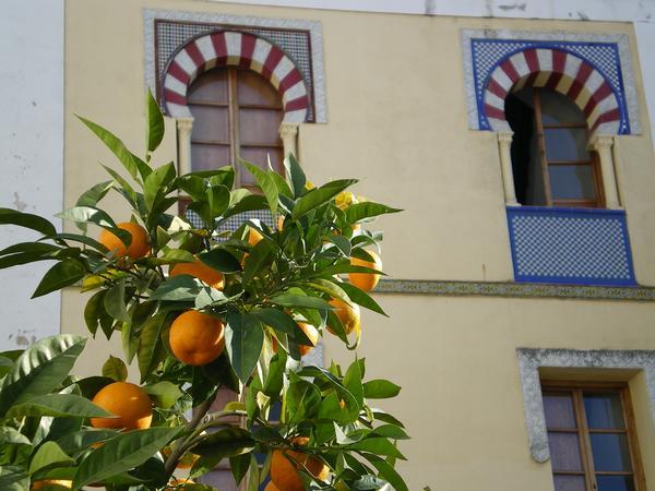 couleurs andalouses 1